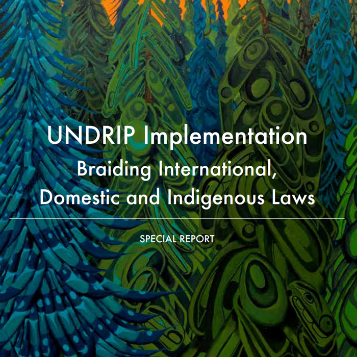 Centre for International Governance Innovation - UNDRIP Implementation: Braiding International, Domestic, and Indigenous Law